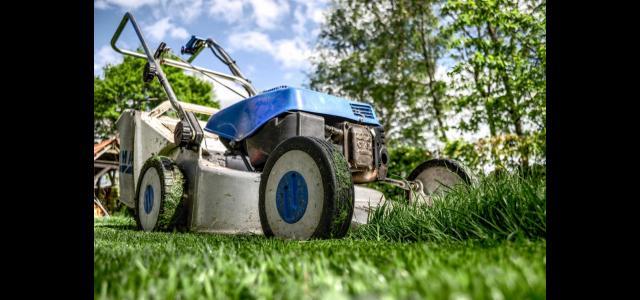 Taglio dell'erba